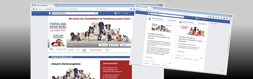 Arbeitsbeispiel Facebook Social-Media-Marketing